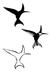 A set of three tribal hummingbird tattoos