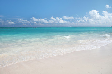 Tropical Paradise - White Sand Beach and Ocean Background