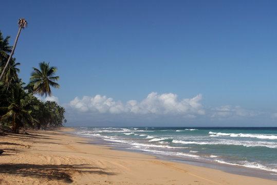 Coson beach, Las Terrenas, Samana peninsula, Dominican Republic