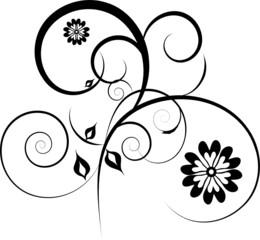decorative flowers isolated on white