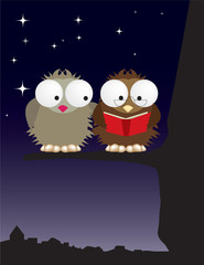 Mr and Mrs owl in love