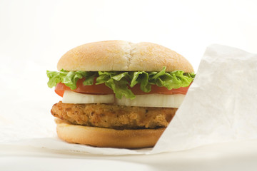 crisp chicken burger with tomato onion cheese lettuce
