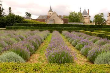 Schlossgarten - castle garden