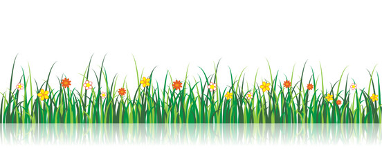 Vector Grass Illustration With flowers