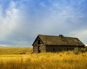 Abandoned Horse Barn