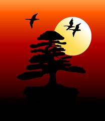Bonsai at sunset with flying geese