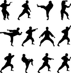 Silhouettes of positions of the karateka.