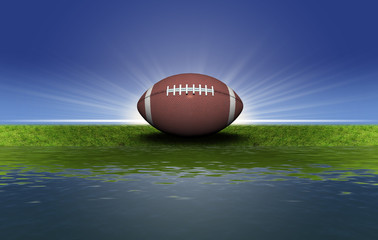 football on the green grass