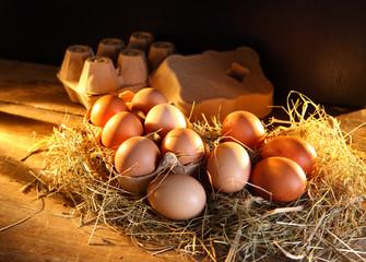 eggs - composition