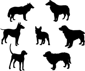 set of seven dogs
