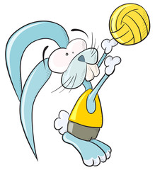 Volleyball bunny