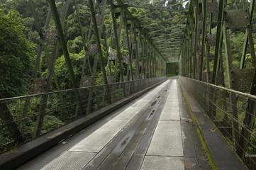 France, Martinique, pont de Grand Rivière