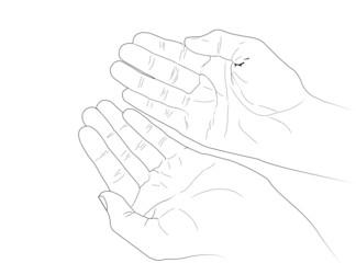 Vectorized Human Hands