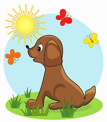 Foto auf Leinwand Hunde Dog. Cartoon, vector illustration