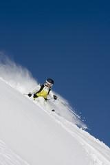 ski freeride 9
