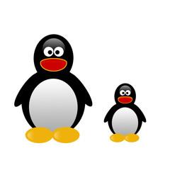 Illustration of two penguins on white background