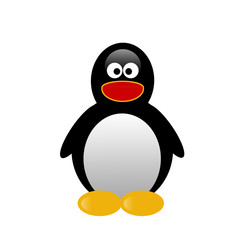 Illustration of penguin on white background