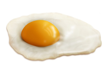 fried egg illustration