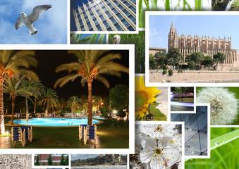 vacations memories