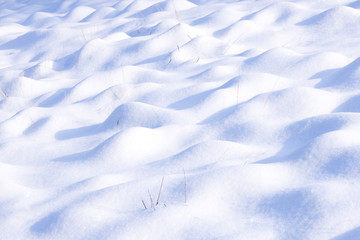 Snow-covered ground
