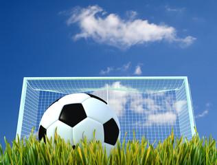 soccer-ball and door on a grass field