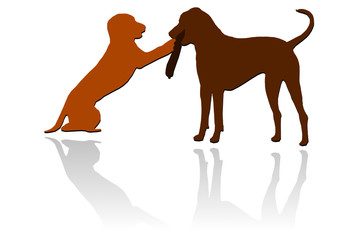 Hunde mit Stöckchen