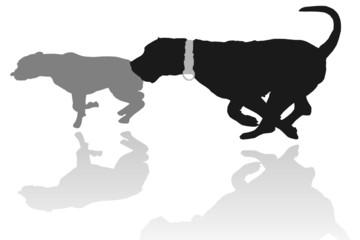 Hundespiel