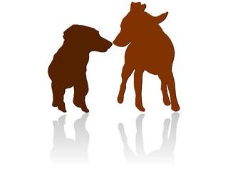 Hundeannäherung