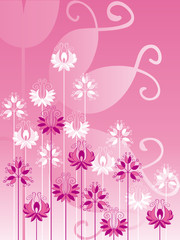 Ornate flowers on pink background
