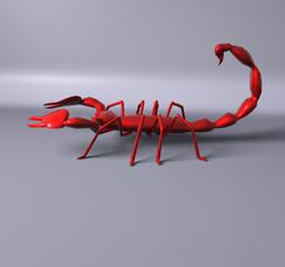 Scorpion rouge