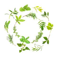 Herb Leaf Circles