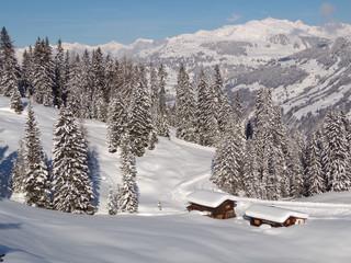 Swiss Alps Landscape in Winter