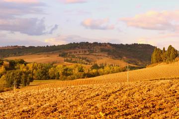 Einsame Landsschaft in der Toskana