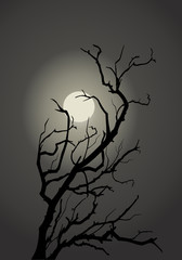 Tree on a background sky with a moon