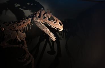 Skelett eines Dinosauriers mit gruseligen Schatten