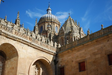 Dome of Salamanca New Cathedral, Spain