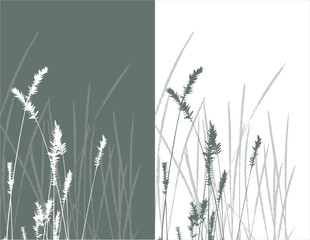 real grass  silhouette / vector /  objects are separated