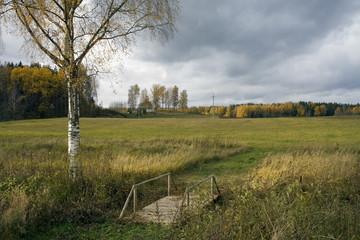 A bridge and field in reserve Karula, Estonia
