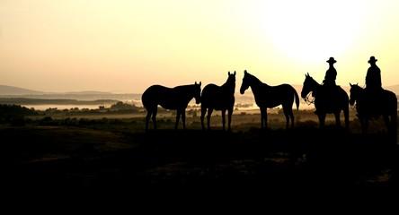 cowboy and sunrise
