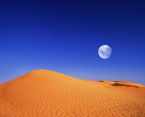 Poster Bleu fonce Nachts in der Wüste
