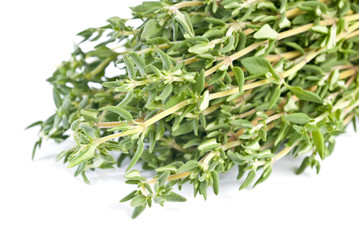 Bunch of Thyme Isolated on White