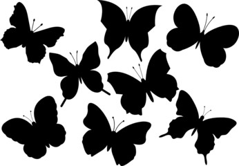 Set of various flying butterflies vector illustration