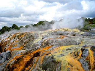 Po Hutu Geyser, Te Puia, Rotorua, New Zealand