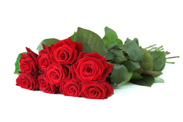 Bunch of red roses.