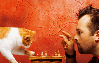 two chess players: cat and man