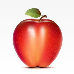A red apple on a white background