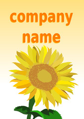 sunflower company