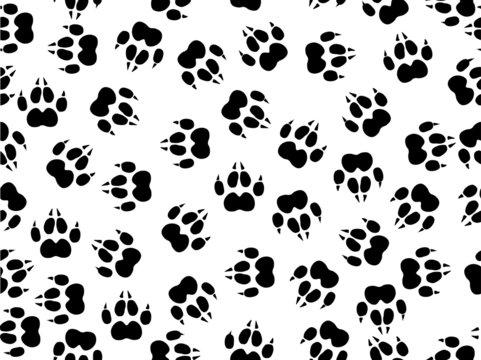 seamless illustration of wildcat foils