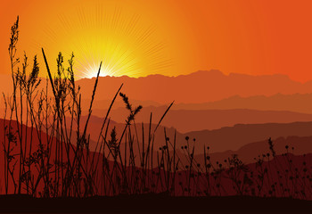 Beautiful sunset over mountains with grass silhouette / vector