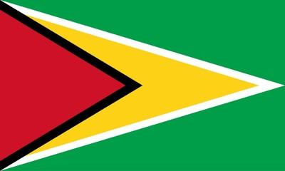 Flag of Guyana. Illustration over white background